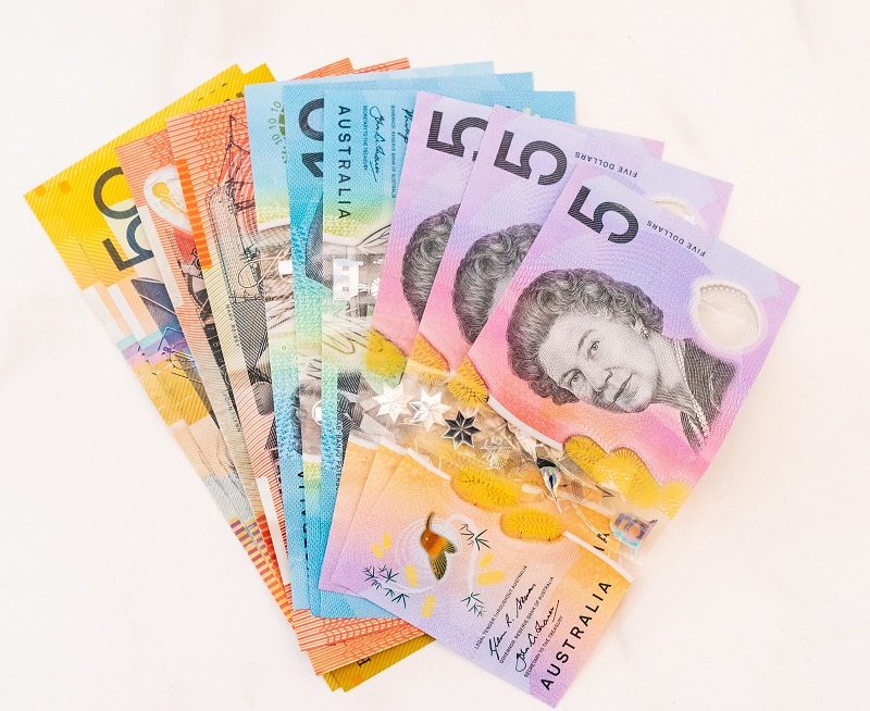 How Much Does a Building and Pest Inspection Cost in Sydney?
